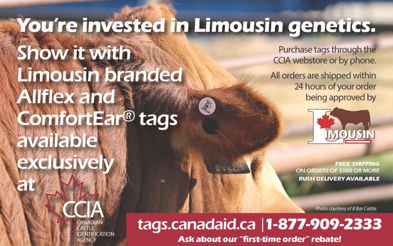 CCIA Limousin Tags Advertisement