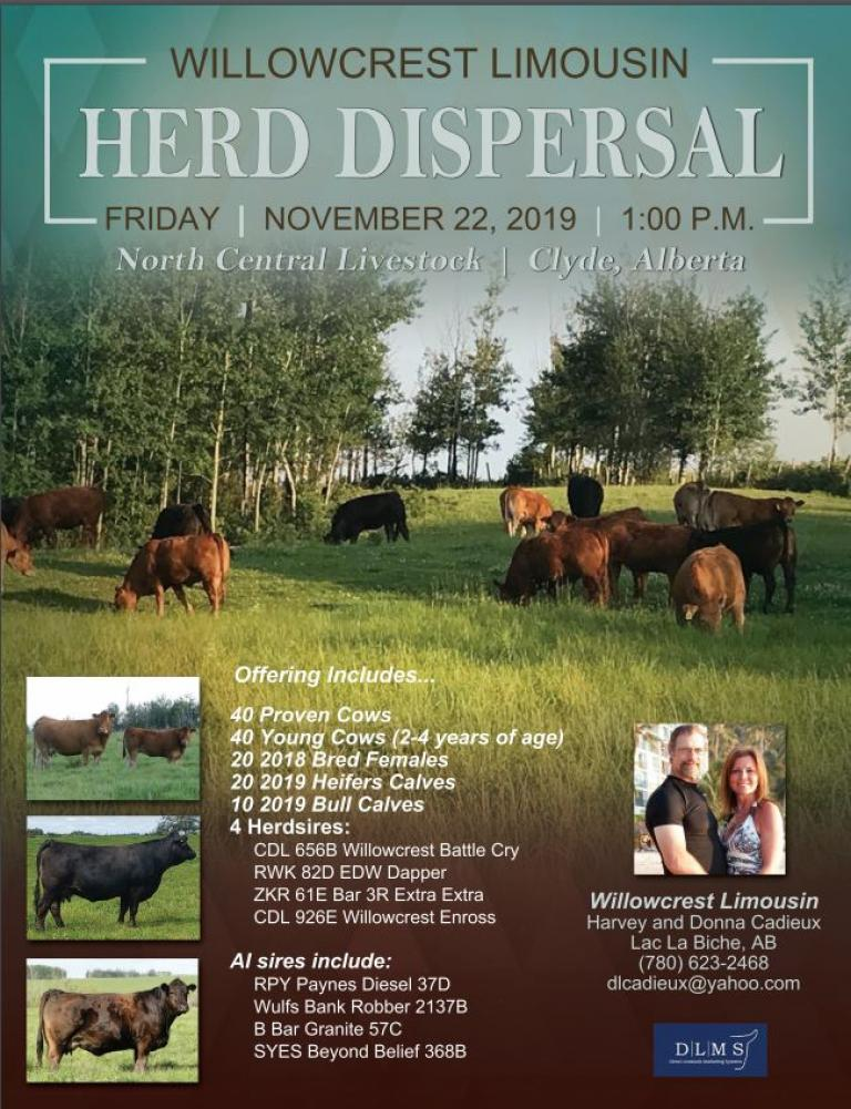 Willowcrest Limousin Dispersal 17Sep2019
